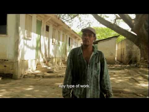 Bananas Don't Grow on Trees: Making money in a Dominican banana batey