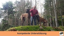 Mobile Hundeschule Problemhunde Hundeschule Donauwörth Hundeschule Dillingen Hundeschule Augsburg