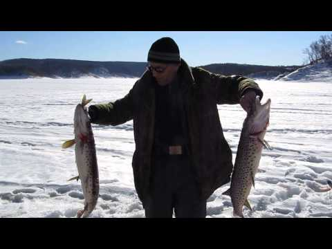 прогноз рыбалки в нефтеюганске
