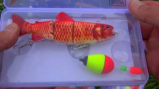 FISH EAT ROBOT first pike on a ROBO BAIT fishing lure