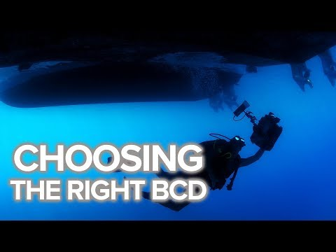 Choosing The Right BCD