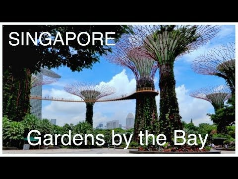 SINGAPORE Gardens by the Bay & ArtScience Museum