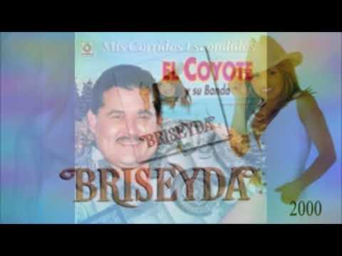 Vas a pagar. Briseyda Solís vs El Coyote