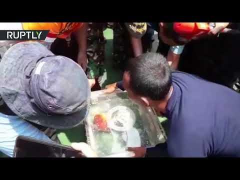 Lion Air plane crash: Divers retrieve black box from wreckage Mp3