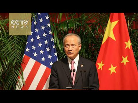 Chinese ambassador criticizes US remarks on South China Sea