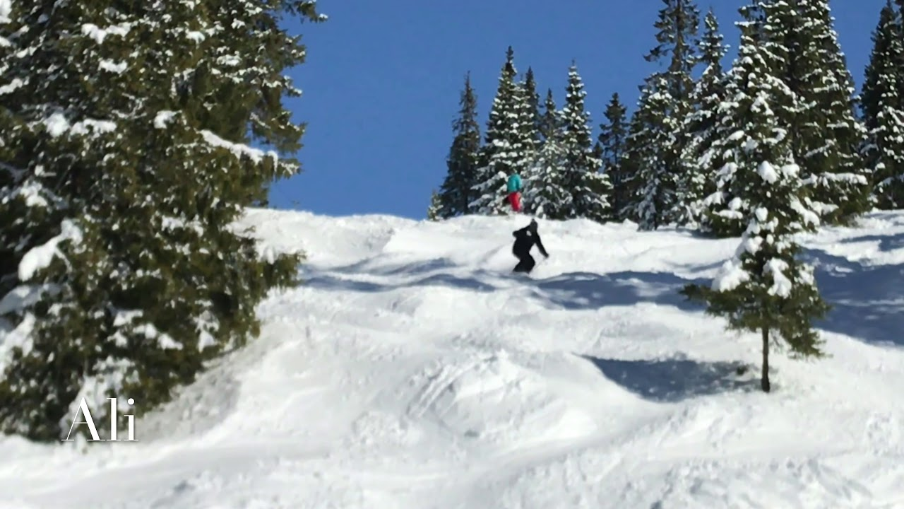 Ski Definition Bumps & Variable snow www.skidefinition.com