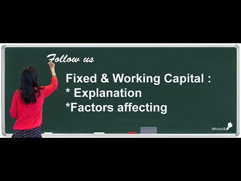 Fixed and Working Capital Chapter 9 Class 12 Business Studies
