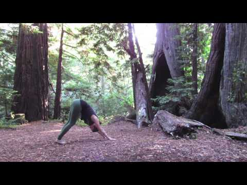 10 Minute Easy Yoga Sequence: Grounded Warrior Flow