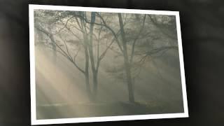 Hà Nội mùa kí ức-Lyrics