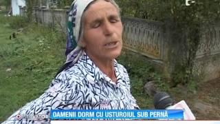 Se adânceşte misterul în satul din Gorj bântuit de strigoi! Sofia, mătuşa care a murit în urm