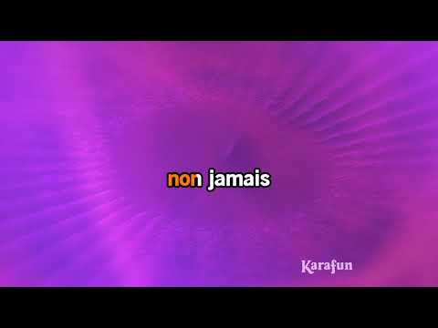 Karaoké Je ne vous oublie pas - Céline Dion *