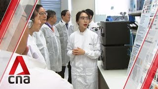 Singapore scientists uncover new fatty liver treatment in breakthrough study