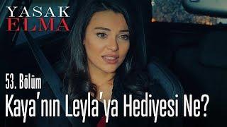 Leyla'nın nutku tutuldu - Yasak Elma 53. Bölüm