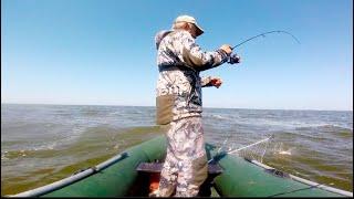 ЖОР ПОСЛЕ НЕРЕСТА КЛЮЕТ НА КАЖДОМ ЗАБРОСЕ Рыбалка на спиннинг 2021 Ловля Окуня