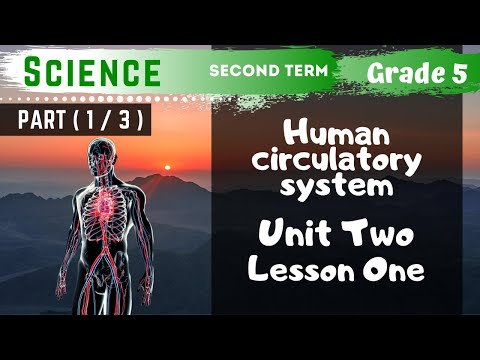 Science | Grade 5 | Unit 2 Lesson 1 - Part 1 - Circulatory system and circulation
