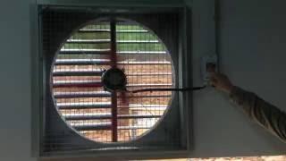 Вытяжные вентиляторы Агровент серии AF с электродвигателями «Мultifan»