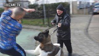 Rappen met Emms - Darri & Bel Hassani bang voor honden! VOETBAL VLOG #9 (TOUZANI TV)