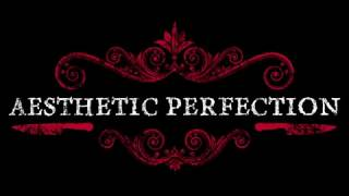 Video Aesthetic Perfection Industrial Pop Tour 2017 I Medellin 6.08.2017 download MP3, 3GP, MP4, WEBM, AVI, FLV Agustus 2017