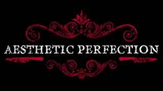 Video Aesthetic Perfection Industrial Pop Tour 2017 I Medellin 6.08.2017 download MP3, 3GP, MP4, WEBM, AVI, FLV November 2017