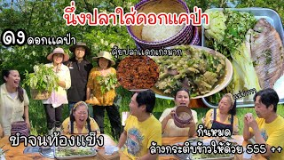 EP.515 Picking Korean wild Agasta to cook Thai food deliciously.