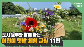 도시농부와 함께 하는 어린이 텃밭 체험 교실 11편 ㅣ 채소꽃과 야생화 알아보기썸네일