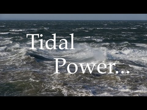 Tidal Power...Is It Really Green?