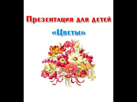 Мультфильмы про цветы для детей
