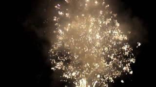 笛吹市芦川町の8月14日に行われた「納涼の夕べ」エンディングの花火です。