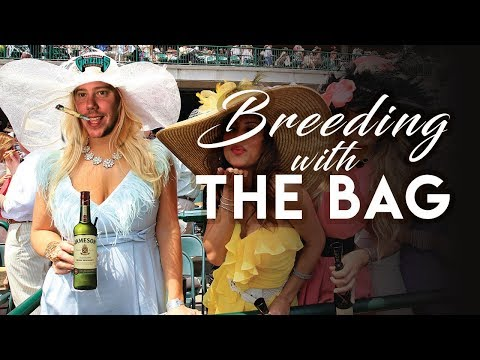 Free Picks With Jimmy The Bag | 2017 Breeders Cup Championship Friday