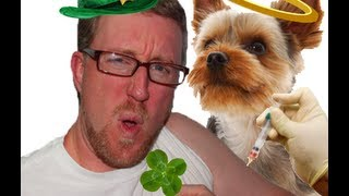 Care: About Your Dog Or Cat Allergy! Happy St. Patrick's Day!