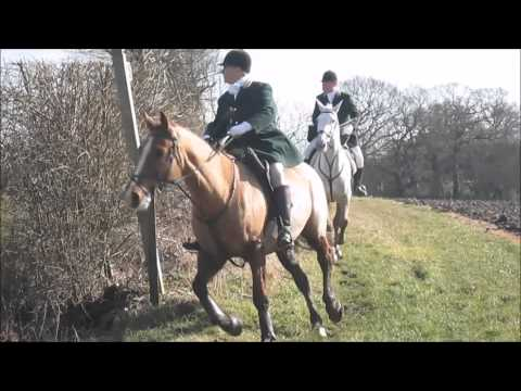 Hunting With The Easton Harriers
