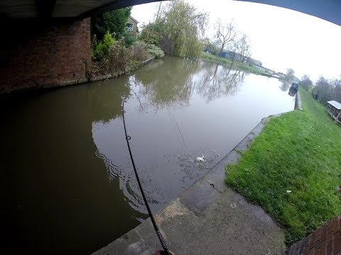 Ultra Light Lure Fishing - Shropshire Union Canal