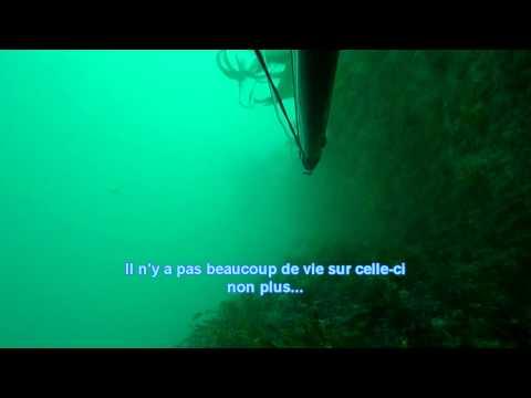 Sortie chasse sous marine de pâques à St CAST 2011.mp4