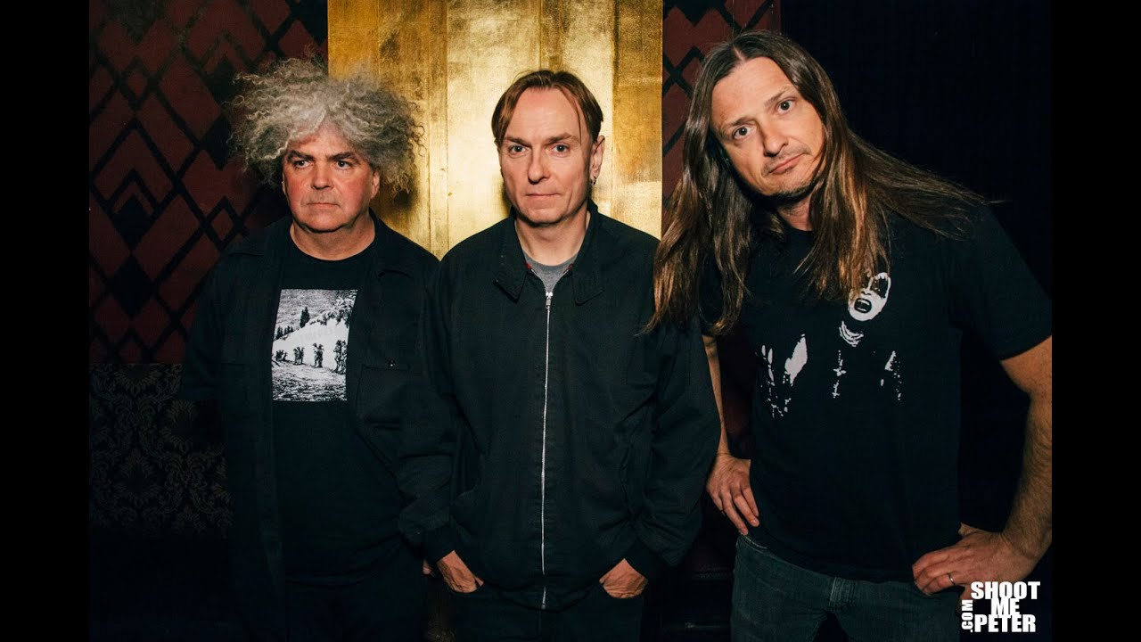 Image result for the melvins