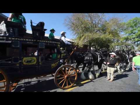 2017 Savannah St. Patrick's Day Parade