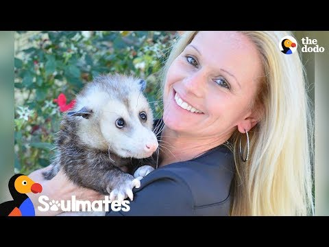 Woman's Soulmate Is A Possum - KRICKET | The Dodo Soulmates