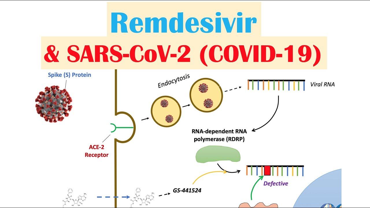 Remdesivir Sars Cov 2 Covid 19 Mechanism Of Action