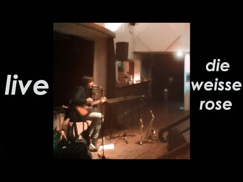 Sunday Store - Live @ Die Weisse Rose 29 November 2017 (Berlin, Germany) - WebCam Experience
