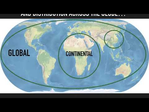 Geopolitics: Models of Analysis