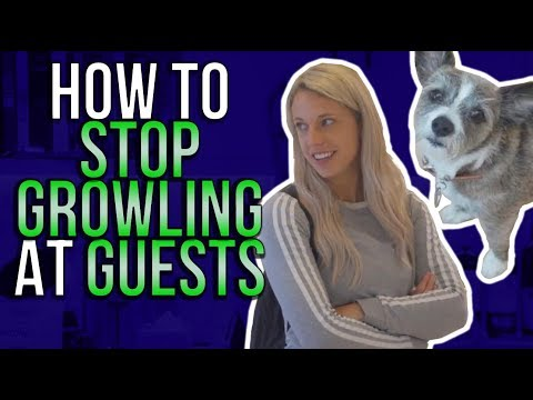how-to-stop-growling-at-guests