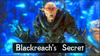 A Very Big Skỳrim Secret Has Just Been Revealed