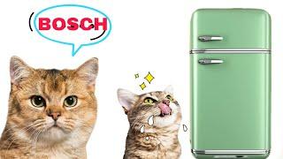 холодильник BOSCH стоит ли покупать / Обзор спустя 4 года