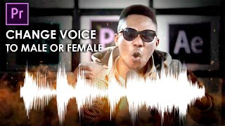 How to change voice in Premiere Pro (Male or Female)