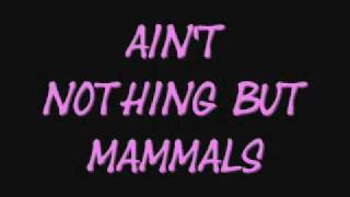 ain't nothing but mammals