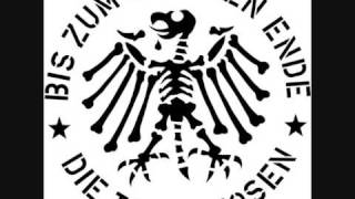 abt von andex - Die toten Hosen