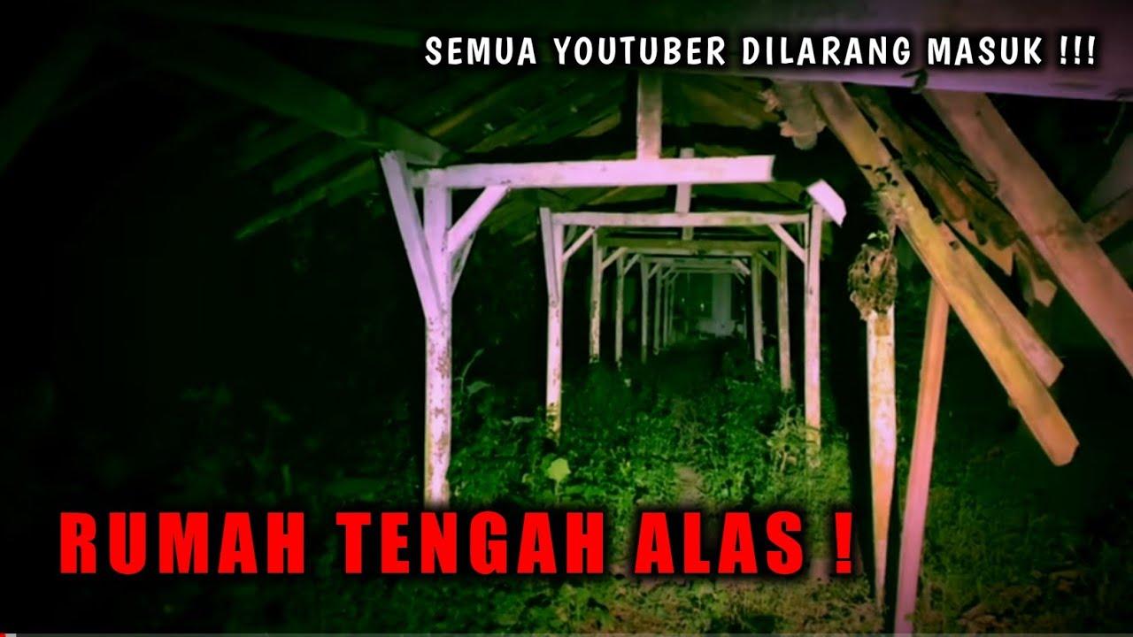 BUNYI GONG !!! BUKAN TEMPAT SEMBARANGAN !!! RUMAH TENGAH - TENGAH ALAS || JEMBER