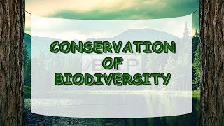 Biodiversity Essay In English  Cinetpainorg What Is Biodiversity Subjectenvironmental Sciences Paper Biodiversity And  Conservation Biodiversity Ecological Essay Biodiversity Is The Variety Of  Plant  Business Communication Essay also Custom Writers Net  Apa Essay Paper