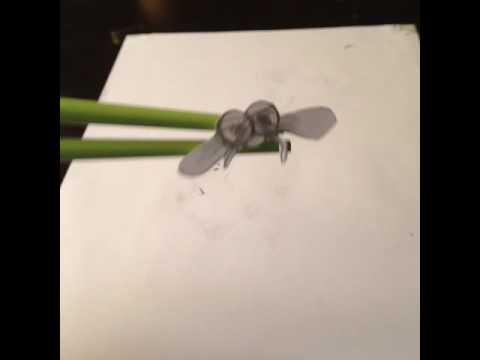 Blurry Edge Between Pencilpaper Reality Catching Fly With - Reality with pencil and paper
