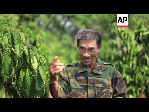 Vietnamese coffee growers affected by climate change