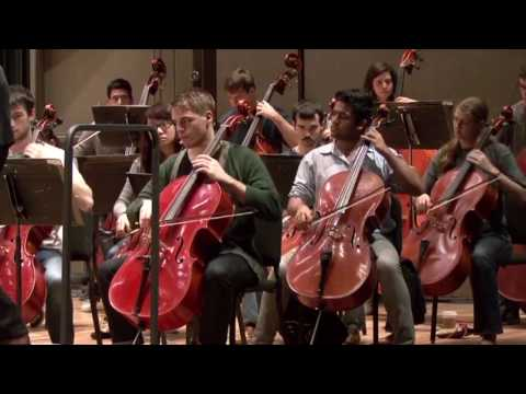 Stony Brook Unviersity Orchestra: All Majors Welcome?